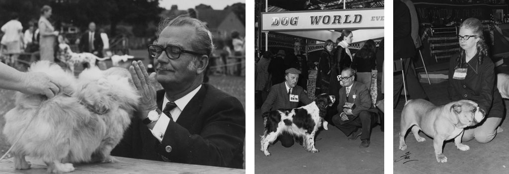 Mr Curnow judging at the Dog Centre Birthday Show