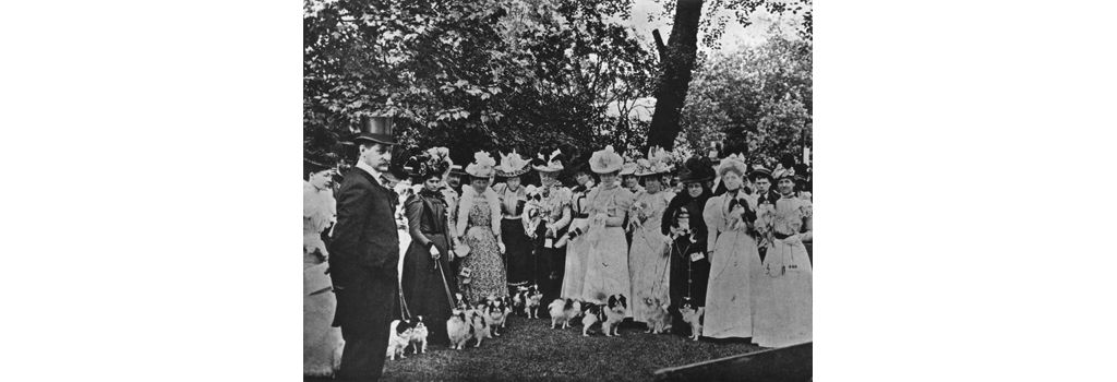 The Judge of the Exhibition of Japanese Spaniels. Date: 1898
