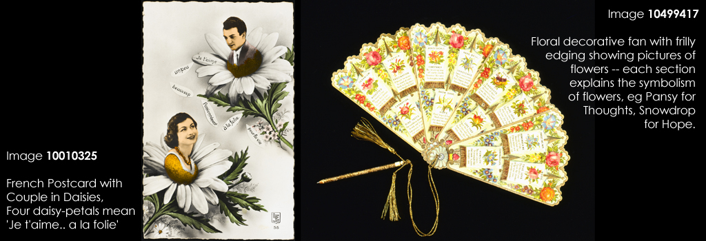 Floral decorative fan with frilly edging showing pictures of flowers -- each section explains the symbolism of flowers, eg Pansy for Thoughts, Snowdrop for Hope. Date: c. 1910s