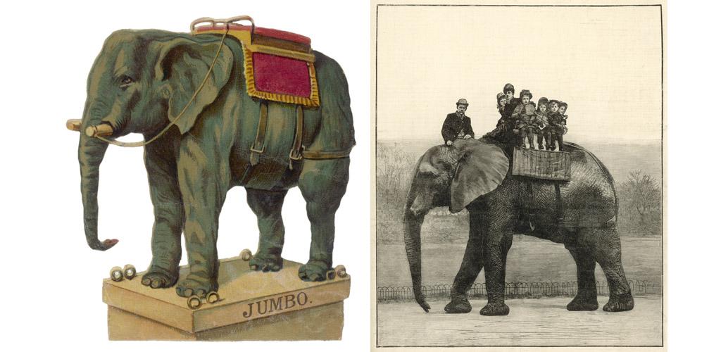 ELEPHANT/JUMBO SCRAP