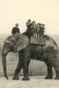 Farewell ride on Jumbo