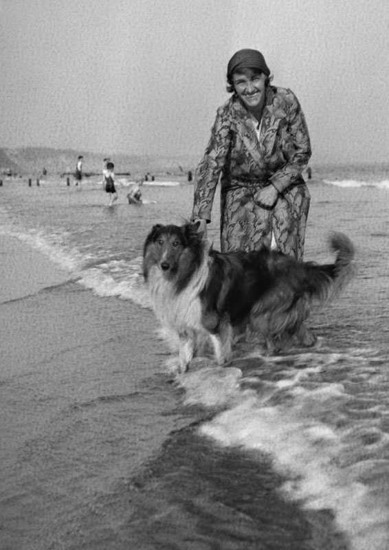 A woman with her collie dog, paddling in the sea.   circa 1930s