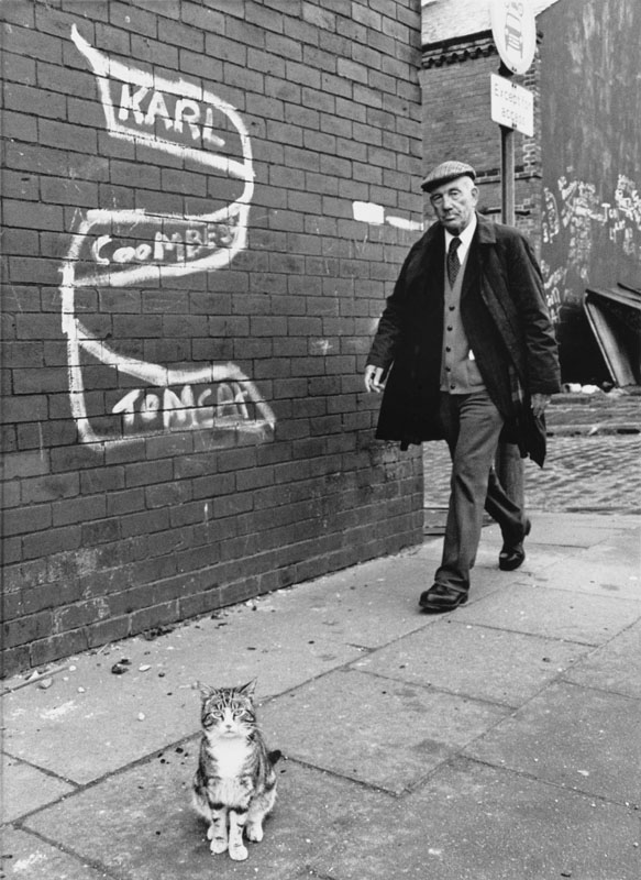 """A pretty cat stands proudly on the pavement in Salford, Manchester below a slogan which reads: """"Karl Coombe Tomcat"""". A smartly-dressed elderly man wearing a flat cap strides purposely along behind. Photograph by Shirley Baker     Date: 1981"""