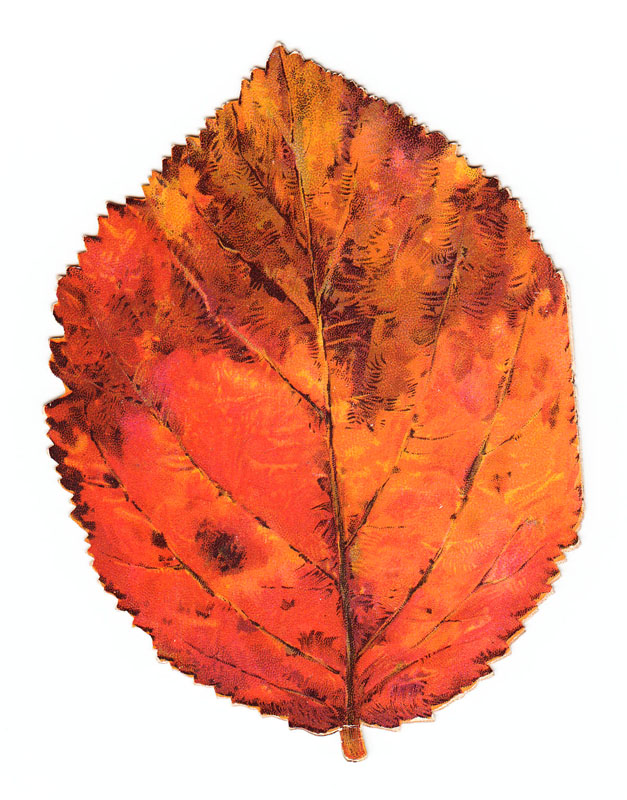 Greetings card in the shape of an autumn leaf.     Date: circa 1890s