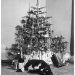 A cute black and white cat  ith nice eyes rolls on its back beneath the Christmas tree. Meanwhile, a sensible toy mouse has its eye on the champagne bottle ...  1960s