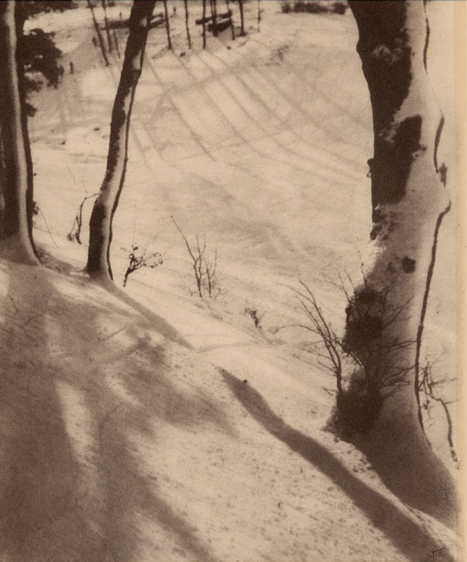 Scene in a wood in winter.   circa 1920