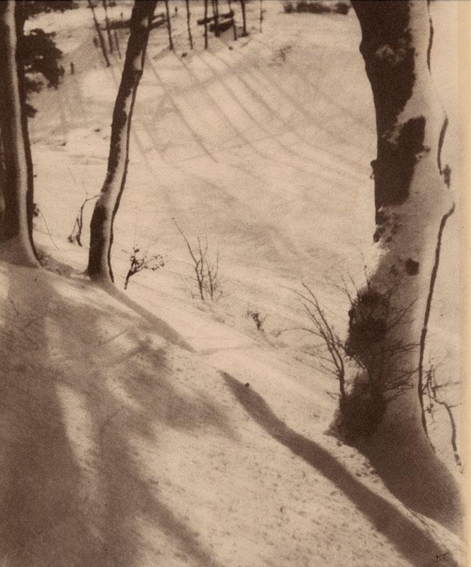 Scene in a wood in winter.   circa 1920