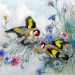 Two goldfinches with cornflowers.   20th century