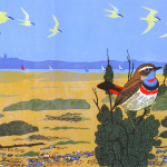 A Red-spotted Bluethroat on the beach at Blakeney Point, North Norfolk.   2005