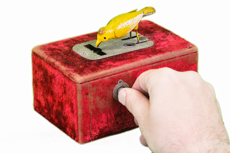Red velvet automatic pin dispenser box with small budgie and hand demonstrating how to use the box. The bird leans over when the button is pushed.