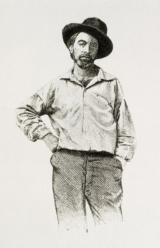 Portrait of Walt Whitman (1819-1892), American poet, aged 36 years.   circa 1855