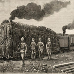 Armoured train used by the  British ; the locomotive is  given blanket protection        Date: 1900