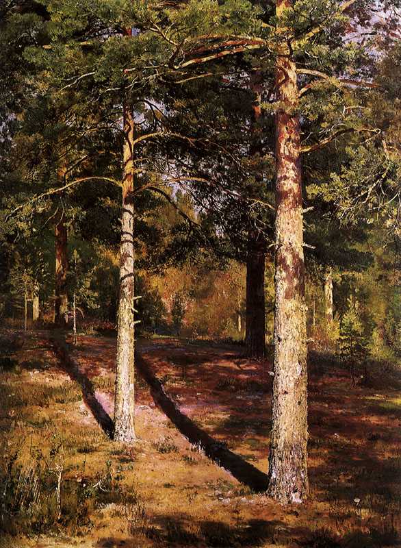 Pine Trees in Sunlight     Date: 1881